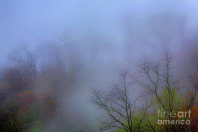 Photograph - Hiding Inside The Fog by Dan Carmichael