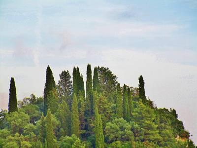 Photograph - High Up On The Hills by Rosita Larsson