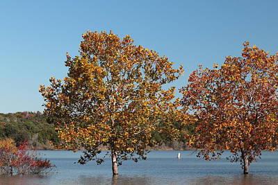 Photograph - High Water 3420 by John Moyer