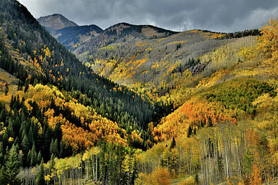 Photograph - Highway 145 Fall Colors In The Spotlight by Ray Mathis