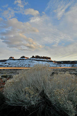 Photograph - Highway 313 Rest Area Near Moab Utah by Ray Mathis