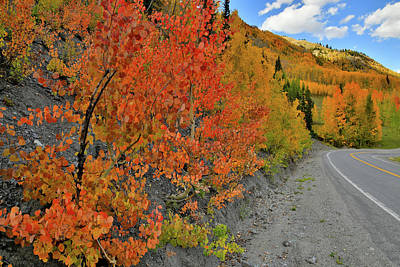 Photograph - Highway 550 Ablaze In Fall Colors by Ray Mathis