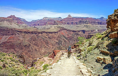 Photograph - Hiking On The Lower South Kaibab Trail by Dawn Richards