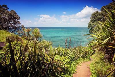 Wall Art - Photograph - Hiking On Tiritiri Matangi New Zealand IIi by Joan Carroll