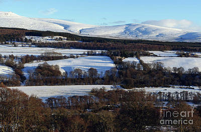 Photograph - Hill Of Knocknashalg by Phil Banks