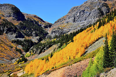 Photograph - Hills Of Aspens Near Silverton Co by Ray Mathis