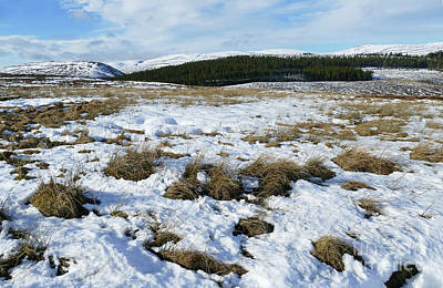 Photograph - Hills Of Cromdale From Moorland by Phil Banks