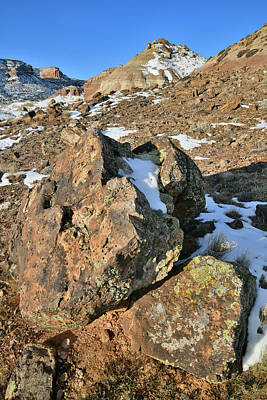 Photograph - Hillside Boulders Of Ruby Mountain by Ray Mathis