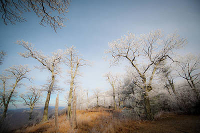 Photograph - Hilltop Hoarfrost by Mark Duehmig