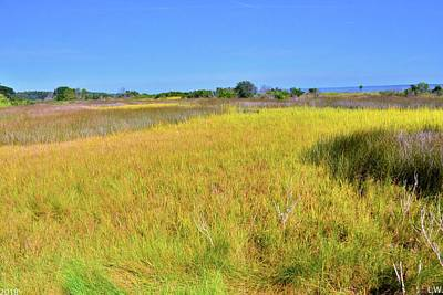 Photograph - Hilton Head South Carolina Marsh Land by Lisa Wooten