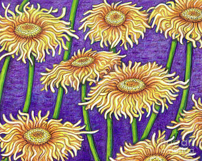 Painting - Himalayan Elecampane by Amy E Fraser