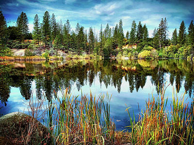 Photograph - Hirschman's Pond by Steph Gabler