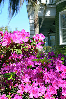 Photograph - Historic San Souci Cottage And Pink Azaleas On Jekyll Island by Bruce Gourley