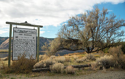 Photograph - History And Willow Tree by Tom Cochran