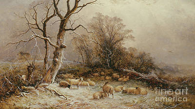 Hoar Frost Wall Art - Painting - Hoar Frost by George Augustus Williams