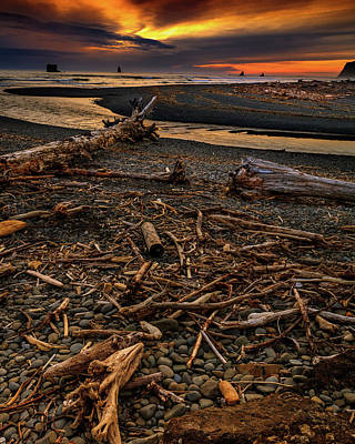 Pop Art Rights Managed Images - Hoh river Mouth 5 Royalty-Free Image by Mike Penney