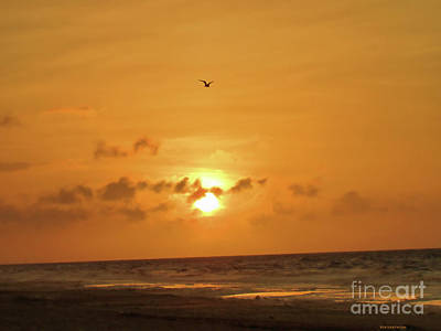 Photograph - Holden Beach Sunrise by Roberta Byram