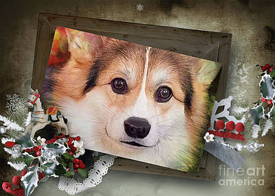 Digital Art - Holiday Tricolor Corgi by Kathy Kelly