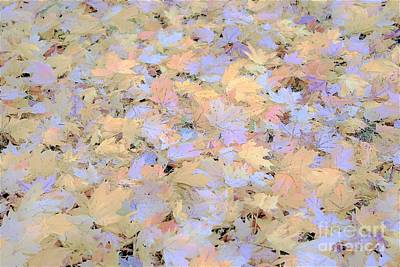 Photograph - Home Leaves3 by Merle Grenz