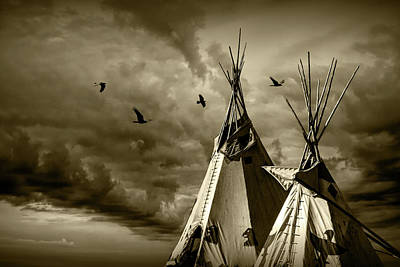Photograph - Home Of The Children Of The Large Beaked Bird In Sepia Tone by Randall Nyhof