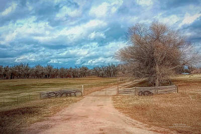 Photograph - Home On The Range by Mike Braun