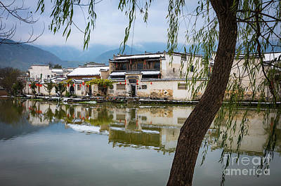 Photograph - Hongcun Tree by Inge Johnsson