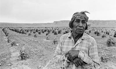Photograph - Hopi Tribesman by Three Lions