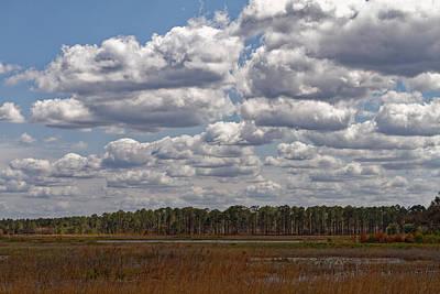 Photograph - Hopkins Prairie by Paul Rebmann