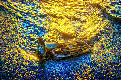 Photograph - Horn In The Surf by Garry Gay