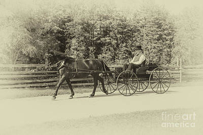 Vintage Buick - Horse And Buggy - 1860s Style - 2 by Robert McAlpine