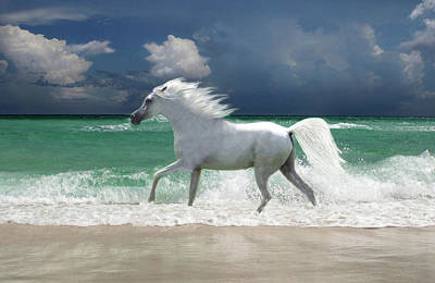 Digital Art - Horse Running Through Surf by Gerard Fritz