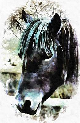 Photograph -  Horse Spirit Guide by Dorothy Berry-Lound