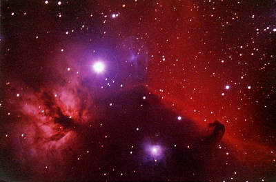 Photograph - Horsehead Nebula In The Belt Of Orion by A. V. Ley