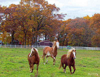 Photograph - Horses In Autumn Cropped by Ken Figurski