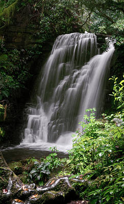 Photograph - Horseshoe Falls by Joan Carroll