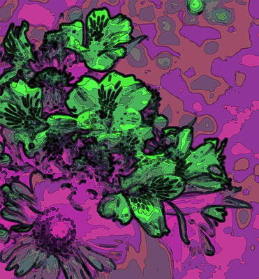 Pop Art Rights Managed Images - Hot Pink, Purple And Lime Peruvian Lilies Royalty-Free Image by Cathy Lindsey