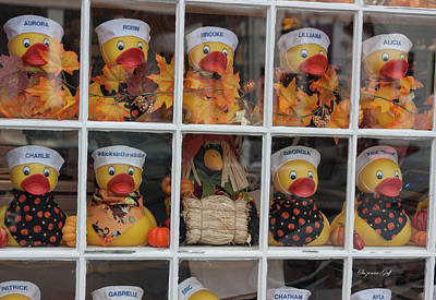 Photograph - How Much Is That Ducky In The Window by Suzanne Gaff