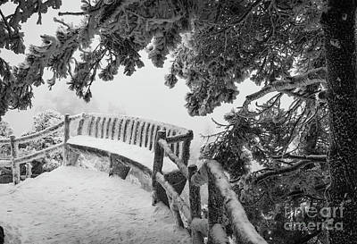 Photograph - Huangshan Bench by Inge Johnsson