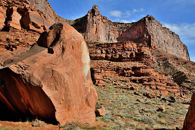 Photograph - Huge Fallen Boulder Along Highway 128 In Utah by Ray Mathis