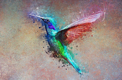 Painting - Humming Bird by Ian Mitchell