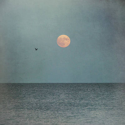 Photograph - Hunter's Moon Sea Square by Terry DeLuco