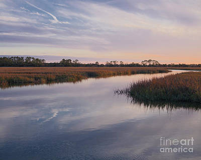 Photograph - Hunting Island Salt Marsh by Patrick M Lynch