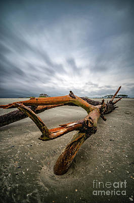 Hurricane Florence Beach Log - Portrait Art Print