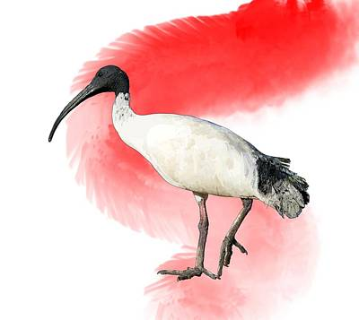 Child Wall Art - Digital Art - I Is For Ibis by Joan Stratton
