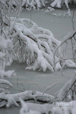 Photograph - Ice And Snow Pond by TJ Fox