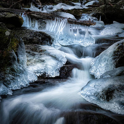 Photograph - Ice Bells by Bill Wakeley