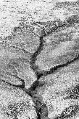 Photograph - Ice Tree  by Thomas R Fletcher
