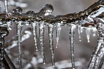 Photograph - Ice9 by Robert Potts