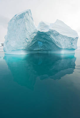 Reflection Photograph - Iceberg And Reflections, Antarctic by Eastcott Momatiuk