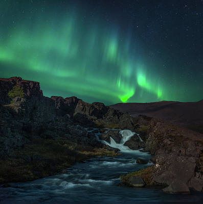 Photograph - Icelandic Flows by Darren White